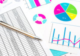 Pen on the documents with financial data and colorful graphs. - 209385110