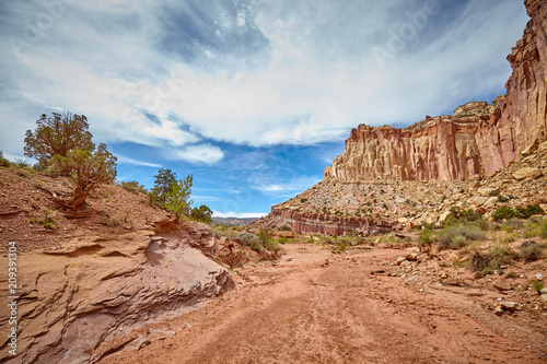 Dried up river bed in the Capitol Reef National Park, Utah, USA.