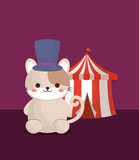 circus tent and cute cat with top hat over purple background, colorful design. vector illustration