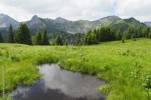 Przygoda przyrodnicza Klammspitze - Hirschwang Ammergebirge
