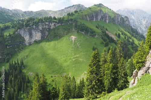 Fotobehang Grijs Naturerlebnis Klammspitze - Hirschwang Ammergebirge