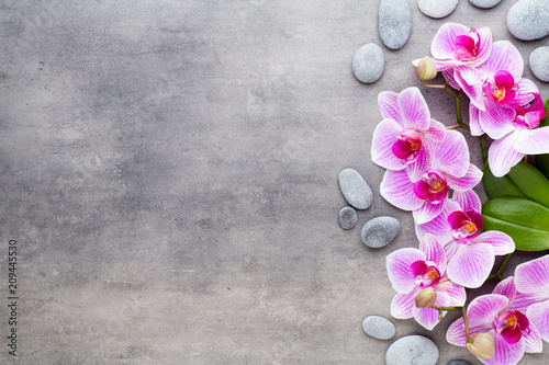 Beauty orchid on a gray background. Spa scene. - 209445530