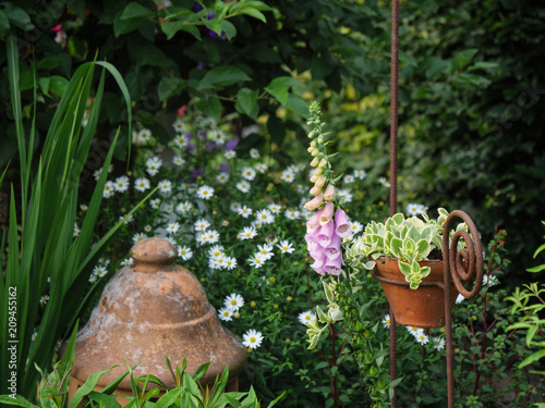 Foto Murales Sommer im Garten