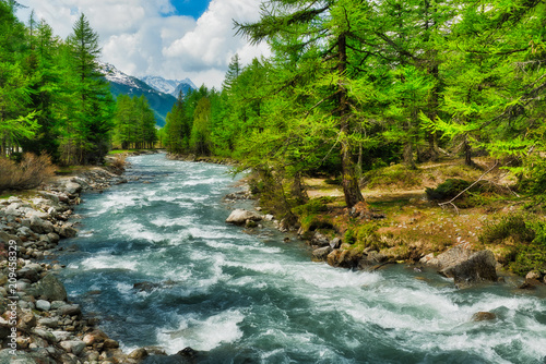 Foto Murales river among the trees in Aosta Valley
