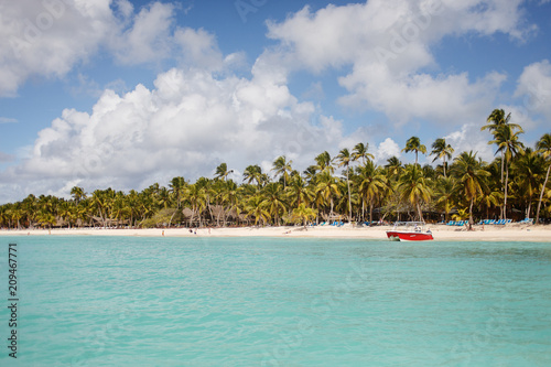 Fotobehang Tropical strand Exotic coast of the Dominican Republic with exotic palm trees on the golden sand