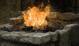 Fire flames moving - 209481706