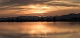 Rojiza puesta de sol entre nubes, montaña y agua de una laguna con patos nadando en la orilla, Parque natural del Delta del Ebro en Tarragona, Cataluña. - 209485933