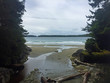 Tofino Beach on Vancouver island in British columbia on a grey day- surfs up
