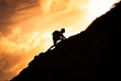 Man hiker climbing up a steep mountain cliff.  People taking risk, motivation and outdoor adventure concept.