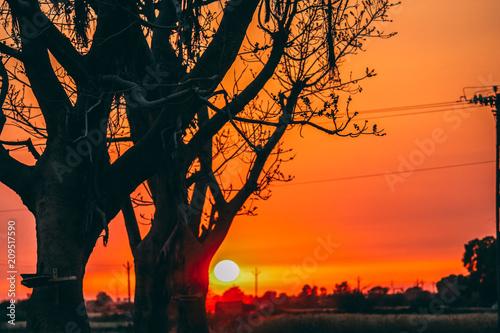 Aluminium Oranje eclat Sunset at the village