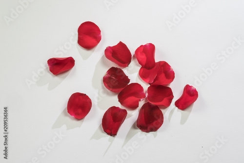 Red rose petals isolated on white background as food garnish