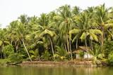 Kerala backwaters, India - 209550716