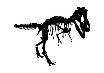 isolated dinosaur skeleton fossil, vector illustration on white background