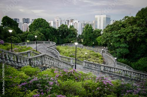 Fototapeta Singapour - Parcs et Jardins