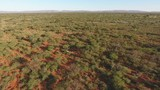 Low flying aerial view of the African savannah, Northern Cape, South Africa - 209566739