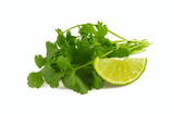 bundle of cilantro isolated on white - 209569372
