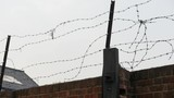 Barb wire on prison wall - 209571575