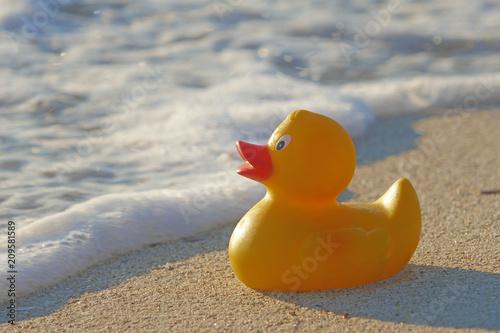 Leinwanddruck Bild Badeente am Sandstrand