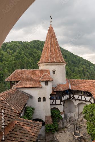 Foto Murales Bran Castle