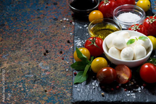 mozzarella, fresh vegetables and spices and dark background for text, horizontal © cook_inspire
