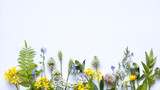 wildflowers on white background - 209599128