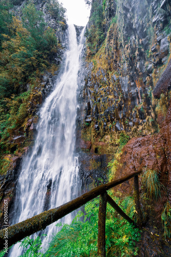 Risco Wasserfall - Wandern auf Madeira - Rabaçal - 209602167