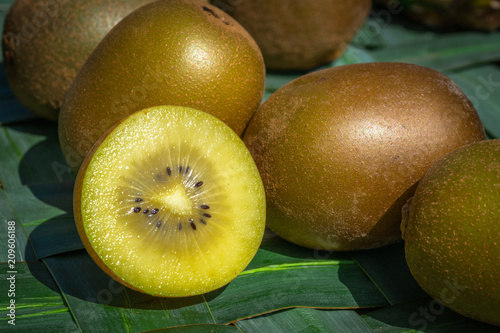 variété de kiwi jaune en gros plan