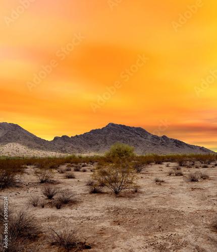 Aluminium Arizona Sonora Desert Sunset Arizona