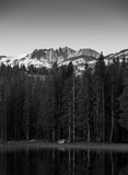 Sunrise over Sierras in California with trees and lake in the foreground in black and white - 209617195