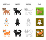 Entertainment, farm, pets and other web icon in cartoon,black,outline,flat style. Eggs, toy, recreation icons in set collection. - 209628700