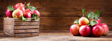 fresh red apples in a wooden box - 209643358
