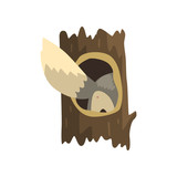 Tail of wolf sticking out of hollow tree, hollowed out old tree and cute animal cartoon character inside vector Illustration on a white background - 209649914