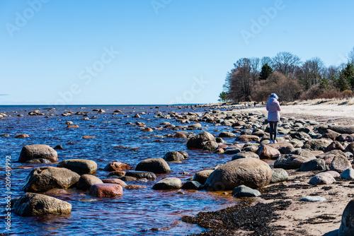 Foto Murales rocky beach in the baltic sea