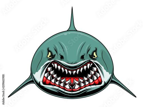 Fototapeta Scary shark
