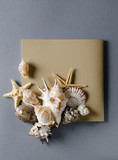 Collection of seashells with empty greeting card on a grey background Vacation summer flat lay Template. - 209667365
