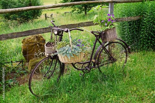 Foto Murales Flowerbike 2