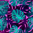 Tropical seamless pattern with monstera leaves. Fashionable summer background. - 209710327