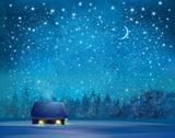 Vector winter wonderland background. - 209734321