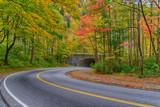 Smoky Mountain Road in Autumn - 209750715