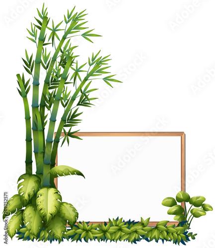 Fototapeta A Natural Bamboo Wooden Frame