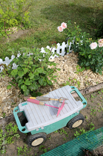 Foto Murales Outils de jardinage. Bêche, r‰teau ou plantoir.