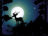 A Silhouette Deer Nigh - 209755591