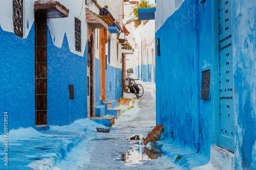 Fotobehang Marokko Small streets in blue and white in the kasbah of the old city Rabat in Marocco