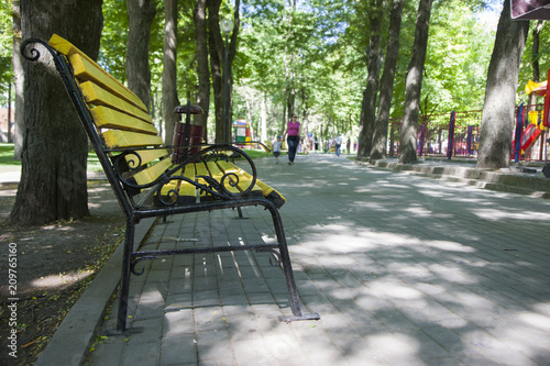 The park alley. The background is blurred - 209765160