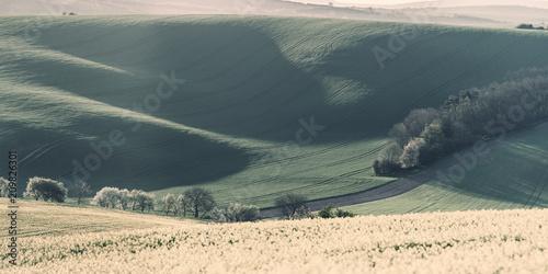 Fotobehang Beige Vintage agricultural spring landscape