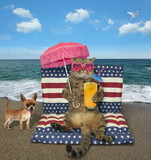 The cat with a glass of orange juice sits on a air bed under a pink umbrella on the beach. The dog is next to him. - 209829915