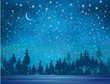 Vector winter wonderland background. Starry night sky and forest background.
