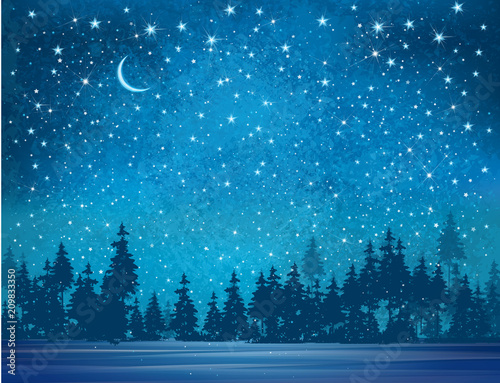 Vector winter wonderland background. Starry night sky and forest background. © rvika
