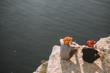 rear view of male travelers in protective helmets eating canned food on rocky cliff over river