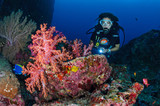 Girl and softcoral